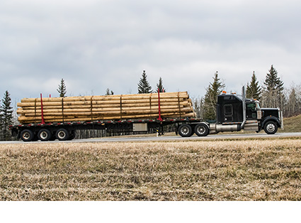 Log Skel Truck Transport