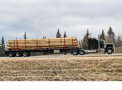 Log Skel Truck Transport