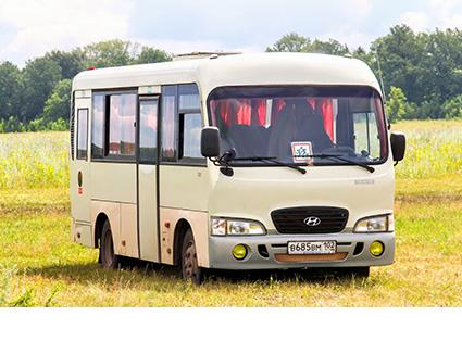 Mini Bus Transport